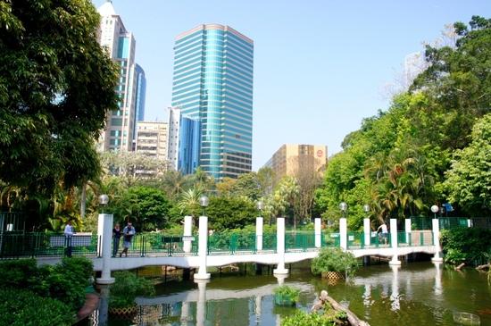 Hong_kong20114_429