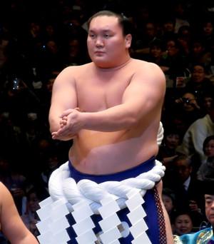 Hakuho_001
